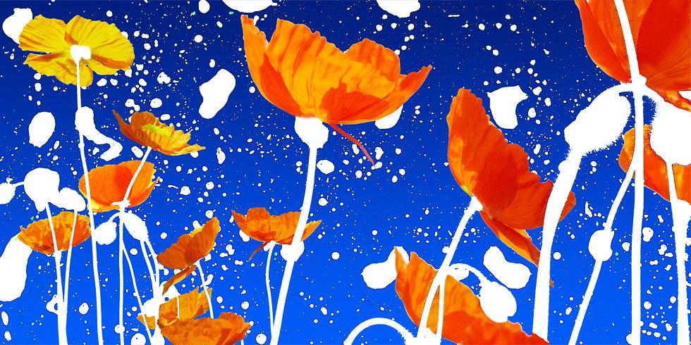 Poster mit Mohnblumen auf blauem Hintergrund mit weißen Flecken, Blau und Rot als Farben, erstellt mit Photoshop im Jahre 2005 in Marktheidenfeld
