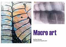 Macro Art lesson plan