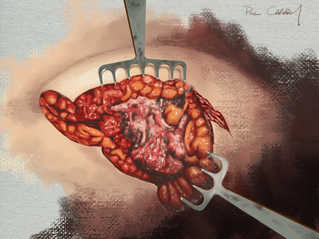Dissection of the corpus mammae.png