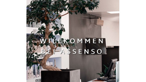 assenso - the meaning of hair