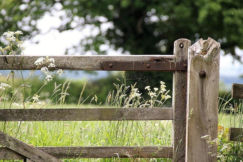 farm-gate-1591383_960_720.jpg