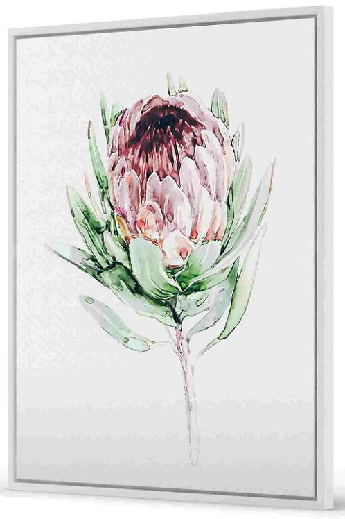 Floating Frame, Protea, 80 x 100