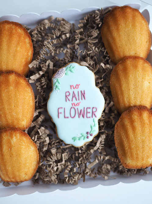 Naschbox - No rain no flower