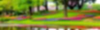 garden-1093681_1280.jpg