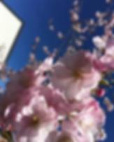 Skärmavbild 2018-10-04 kl. 21.24.27_edit