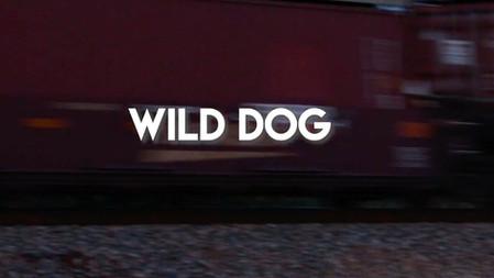 Wild Dog     Music Video