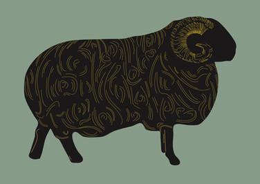 Savile Row Window Display Art Sheep
