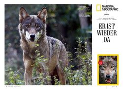 National Geographic Magazine/Deutschland