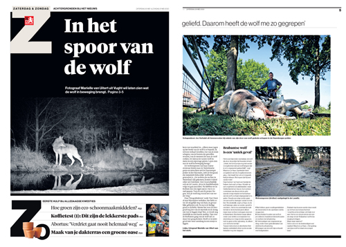 Brabants Dagblad/NL