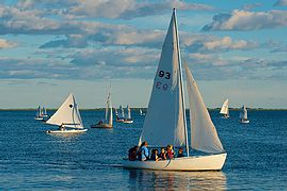 Friends of Bellport Bay-A.jpg