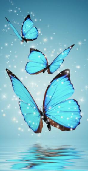 borboleta azul.tiff