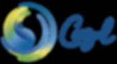 Cazul_Logotipo_Final_PREFERENCIAL.png