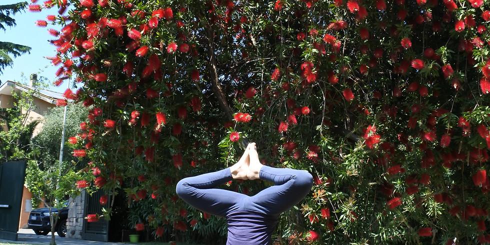Intensivo di Iyengar Yoga