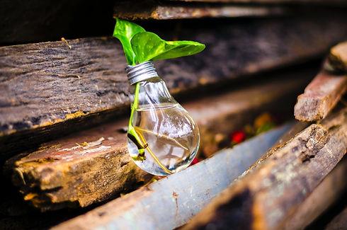 innovate bulb.jpg