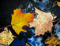 Fall leaves in water drawing