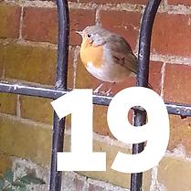 19 December - suburban birds tile.png