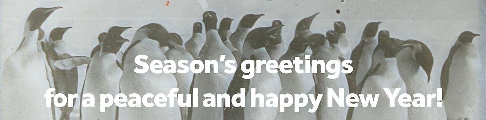 25 December - penguins banner.png