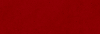 BANNER 2.1.png