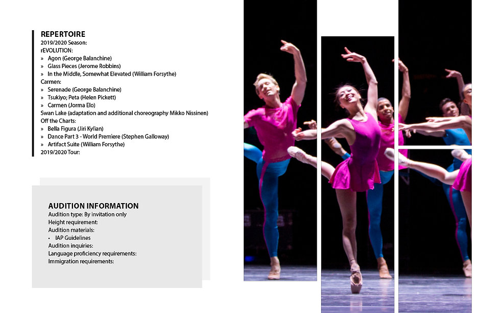 Company Profile- Boston Ballet3.jpg