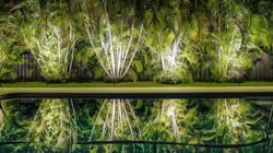 Backyard-best-outdoor-lighting-service-1024x575