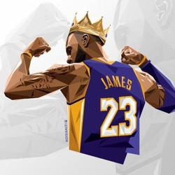 LeBron James LA