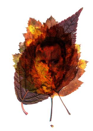 Please, Leaf
