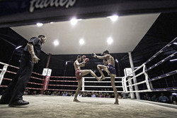The Science of 8 Limbs: Muay Thai