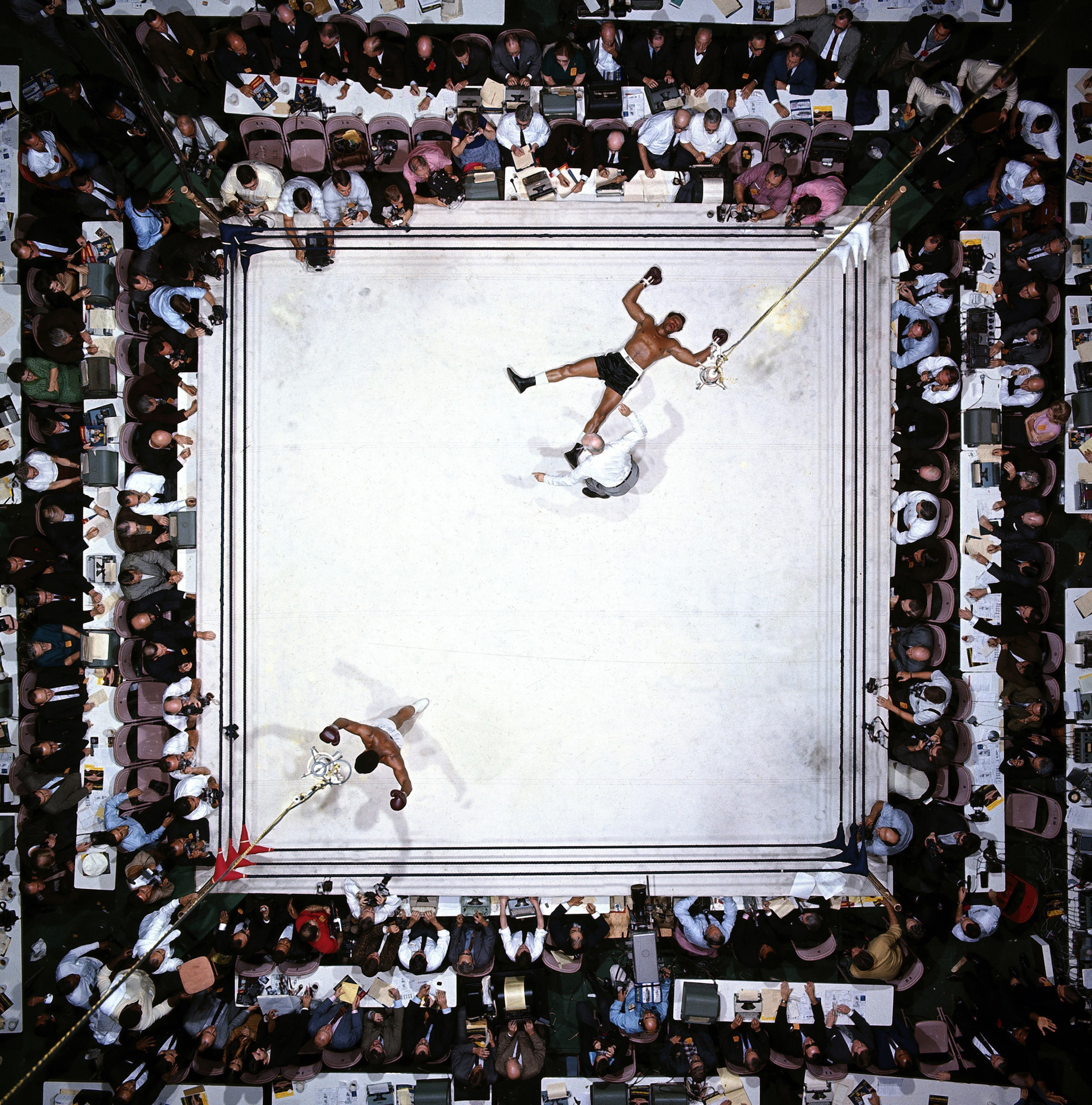 NEIL LEIFER