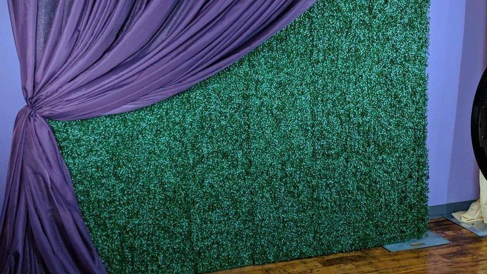 Decorative Wall - Hedge