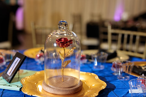 beauty and the beast decor