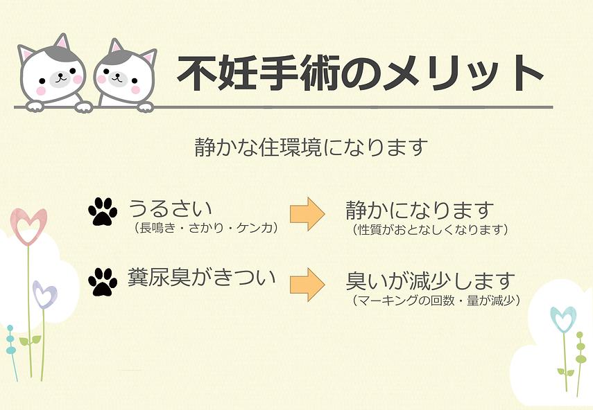 PNG用_飼い主のいない猫をなくすために_FINAL-6.png