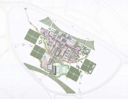 AUC_urban plan MAIN.jpg