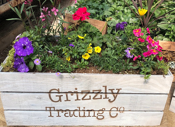 Large Grizzly planter PL0049