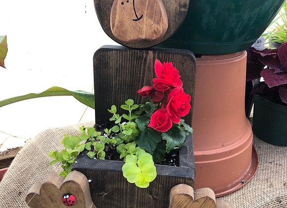Brown Bear planter PL0030