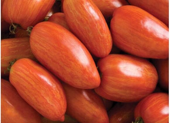 Tomato, Speckled Roman