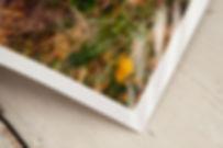 Photographic-Prints-9.jpg