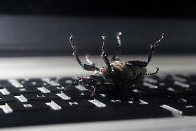 Virus infected computer