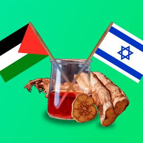O que acontece quando palestinos e israelenses tomam ayahuasca juntos