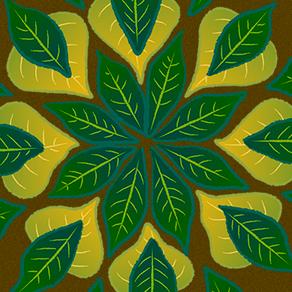 VÍDEO - Encontros Psicodélicos #6: Medicina indígena, farmacologia e plantas medicinais