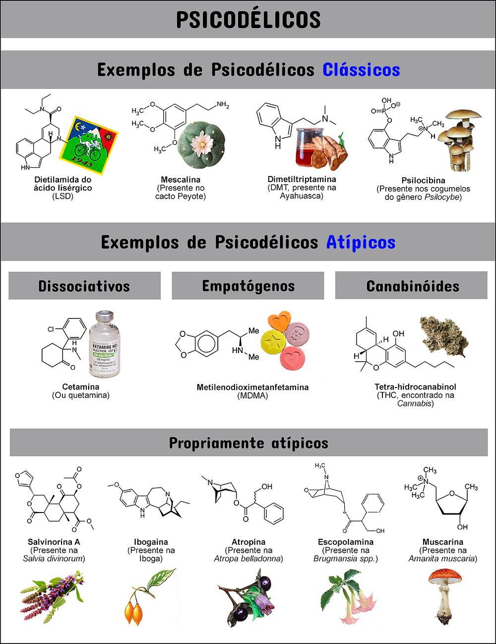 Tabela com a classificação dos tipos de psicodélicos. Psicodélicos clássicos: LSD, mescalina, DMT, psilocibina. Psicodélicos atípicos: Cetamina, MDMA, THC, salvinorina, ibogaína, atropina, escopolamina, muscarina.