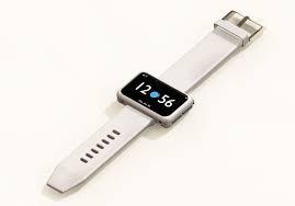 Evolution of Smartwatch - Neptune Pine Smartwatch (Year: 2014)