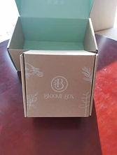 bloome-box-1