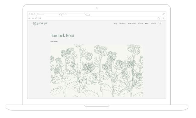BB-Desktop-3.jpg