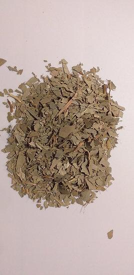 Eucalyptus Eucalyptus sp. (100 g)