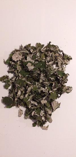 Framboisier feuilles Rubus idaeus (100 g)