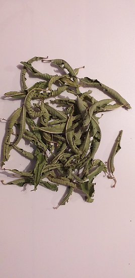 Verveine odorante Lippia citriodora (100 g)