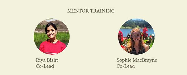 Mentor Training strip.PNG