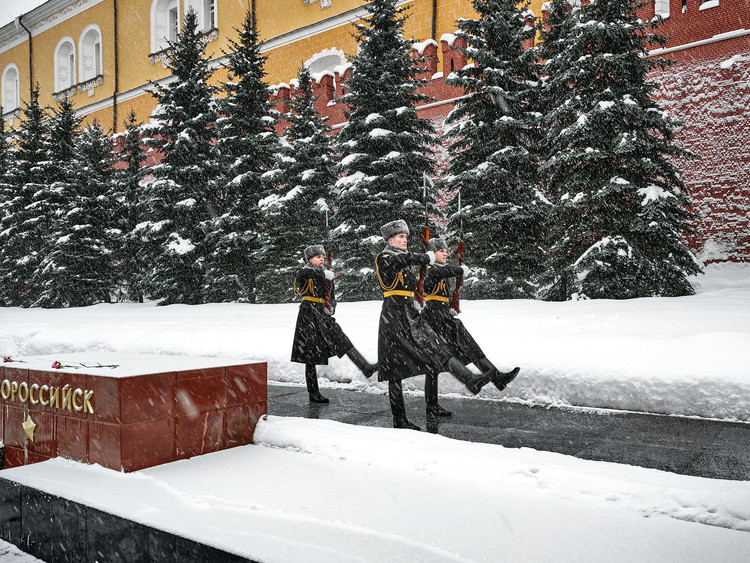Guards of the Kremlin
