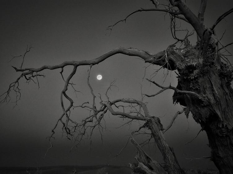Full Moon, Ejina Qi, Inner Mongolia