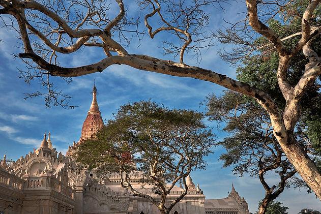 Myanmar #15-0693.jpg